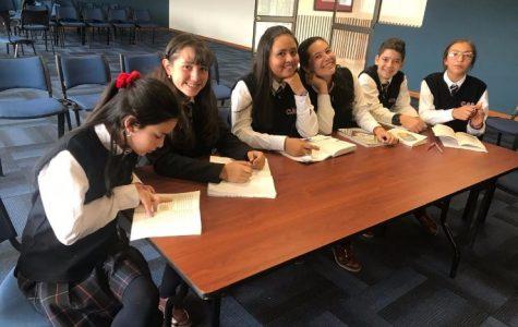 PROYECTOS DE AULA DE LENGUAJE: UNA PRÁCTICA SIGNIFICATIVA